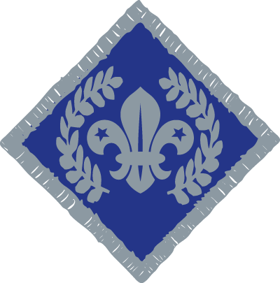 Chief Scout's Diamond Award