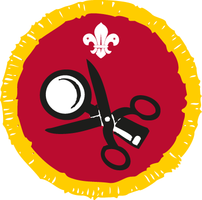 Collector Activity Badge