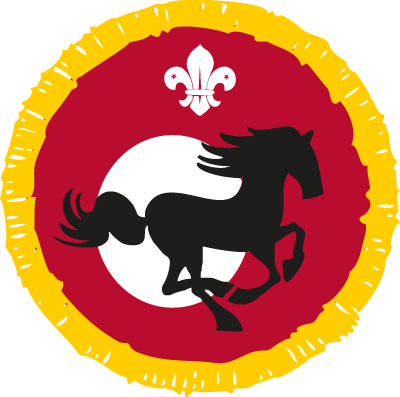 Equestrian Activity Badge