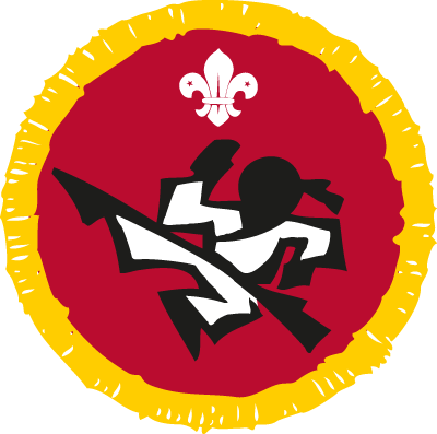 Martial Arts Activity Badge