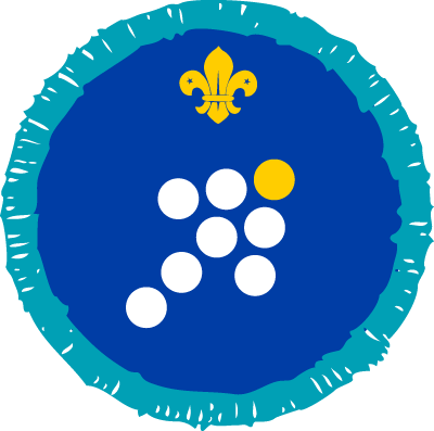 Leadership Activity Badge