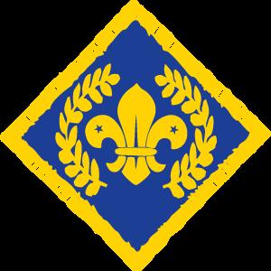 Chief Scout's Platinum Award
